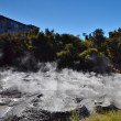 Mud pool. Whakarewarewa Geothermal Reserve. New Zealand. — 图库照片