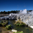 Whakarewarewa Valley of Geysers in New Zelandii.Geotermalny park — Stock Photo