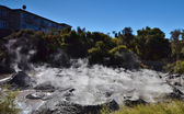 Mud pool. Whakarewarewa Geothermal Reserve. New Zealand. — Stock Photo