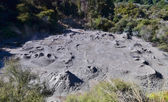 Mud pool. Whakarewarewa Geothermal Reserve. New Zealand. — Stok fotoğraf