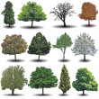 Different vector trees — Stock Vector #25144485
