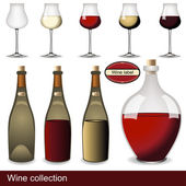 Wine collection — Stock Vector