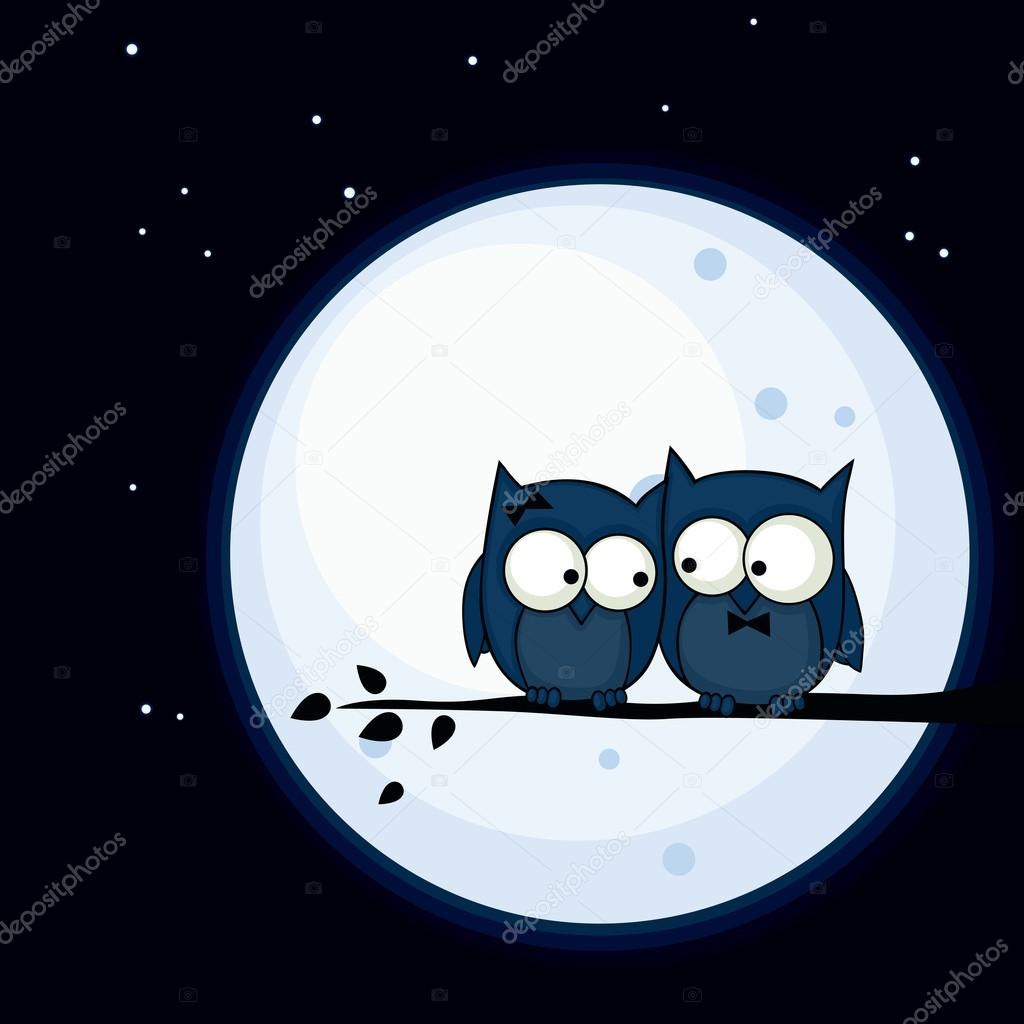 Valentine's Day card with cute owl couple sitting on a branch, with the moon in the background — Stock Vector #19179597