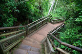 Path through Iguazu National Park — Stock Photo