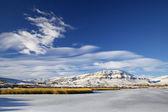 Laguna nimez, Arjantin — Stok fotoğraf