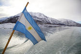 Argentinean Flag in Patagonia — Stock Photo