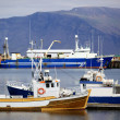 Reykjavik Harbor — Stock Photo
