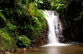 Mindo Waterfall — Stock Photo