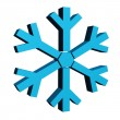 Snow Flake — Stock Photo #13544295