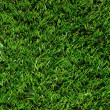 Artificial Grass — Stock Photo #22120361