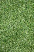 Artificial Grass — Foto Stock