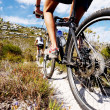 Mountain bike trail — Stock Photo