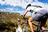 Mountain bike trail — Stockfoto