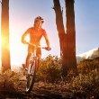 Mountainbike man — Stock Photo