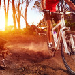Stock Photo: Mountain bike athlete