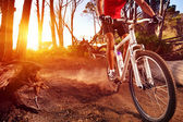 Mountain bike athlete — Stok fotoğraf