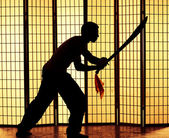 Swordsman silhouette — Stock Photo