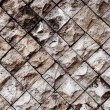 Veertcal rock wall — Stock Photo