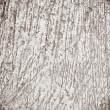 Stock Photo: Texture of scratched wall