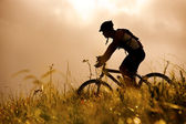 Mountainbike Mann outdoors — Stockfoto
