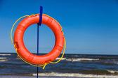 Life wheel with sea on backround — Stock Photo