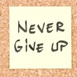 Stock Photo: Never Give Up