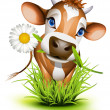 Stock Vector: Jersey cow in grass