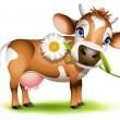 Stock Vector: Little Jersey cow eating daisy
