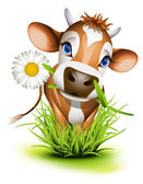 Jersey cow in grass — Stock Vector