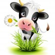 Holstein cow in grass — Stock Vector #13711422