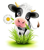 Holstein cow in grass — Vector de stock