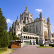 Basilicof Lisieux (Normandy, France) — Stock Photo #19591429
