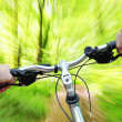 Riding bike through the forest — Stock Photo
