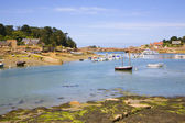 Harbor in Ploumanach, Brittany, France — Stock Photo