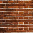 Brick wall — Stock Photo #12862043