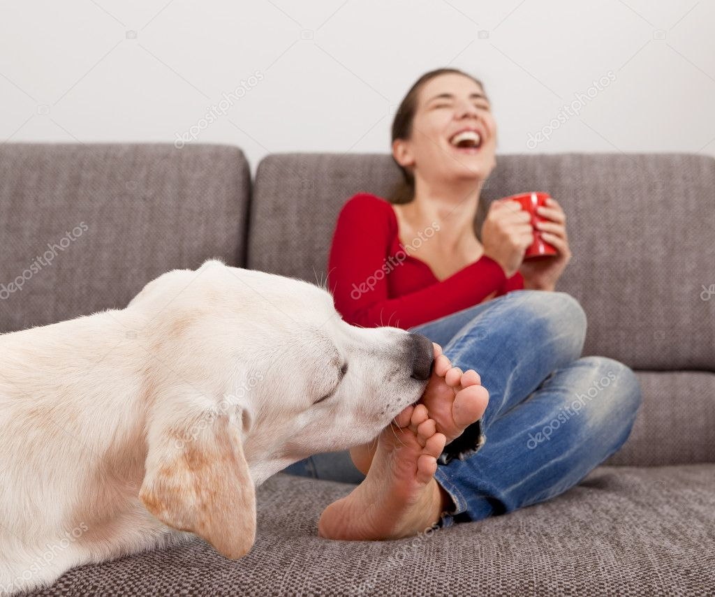 Dog licking the toes - Stock Image