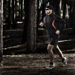 Stock Photo: runing in the forest