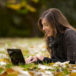 Woman working with a laptop — Stock Photo
