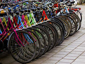 Holland Bicycles — Stock Photo