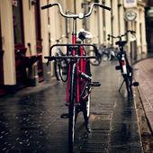 Bicicletas de holanda — Foto de Stock