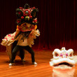 Lion dance — Stock Photo #20129737