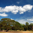 Stock Photo: Skyscape of Prasat Suor Prats, Combodia