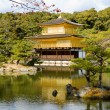 Golden Pavilion — Stock Photo #34716161
