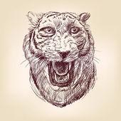 Disegnati a mano tigre — Vettoriale Stock