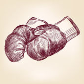 Boxing gloves hand drawing — Stock Vector