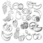 Ensemble de différents fruits. illustration vectorielle — Vecteur