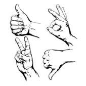 Set of Symbol Hands. Vector Illustration — Stock Vector