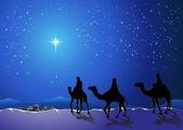 Three wise men go for the star of Bethlehem — Stock Vector