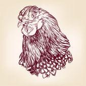 Chicken vintage hand drawn vector illustration — Stock Vector