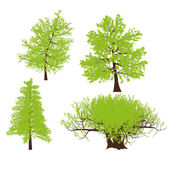Drawing of the tree vector llustration — Stock Vector